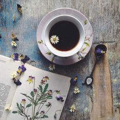 fresh herbs. Book pages allow you to write about the benefits of tea.