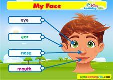 Face vocabulary video