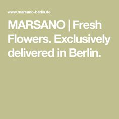 MARSANO | Fresh Flowers. Exclusively delivered in Berlin.