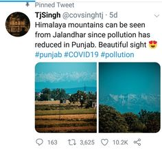"""Cape Royal Management shared a post on Instagram: """"Amazing to see all the signs that our Mother Earth is healing. 🌍💚🌎 Some residents in Northern India…"""" • Follow their account to see 281 posts."""