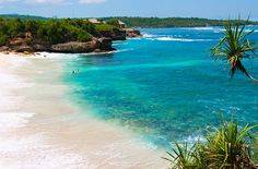Places With Attractions You want to visit in Bali