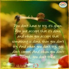 When you accept that something is done then you don't try. And when you don't…