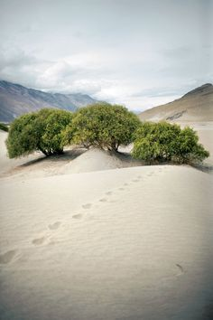 A highland desert above the Wakhan Valley. Tajikistan Travel: Passage to Pamir
