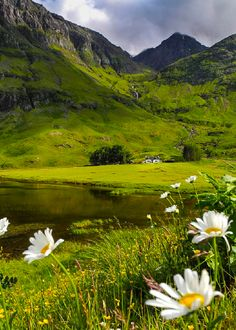 "coiour-my-world: ""Glencoe, Scotland by Natascha Hoiting """