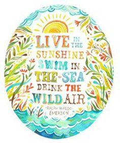 Live in the sunshine, swim the sea, drink the wild air - Google Search
