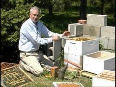 Splitting Hives Part 1