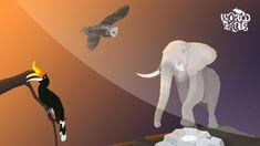 5 LUCRURI INTERESANTE despre ANIMALE