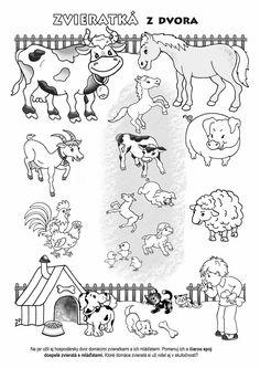 Diagram, Zoo, Words, Science, Decor, Decoration, Decorating, Dekorasyon, Dekoration