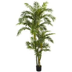 Nearly 6-foot Silk Curvy Parlor Palm Tree