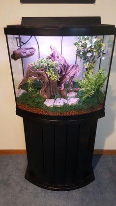 Crested Gecko Habitat Kit With Tribal Art Large 18 X