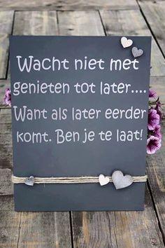 """""""Não esperes por mais tarde para desfrutares, porque se mais tarde vier mais cedo já vais tarde."""""""
