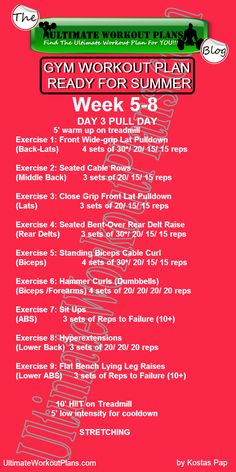 3 Month Women Workout Plan Week 5-8 Day 3: Pull Day. FREE Printable workout template to have it always with you!!! #fitness #printableworkouts #workouts #ultimateworkoutplans #kostaspap