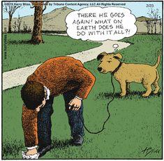 Bwahahahaha I wonder if they really think that? Dog Jokes, Funny Dog Memes, Cartoon Jokes, Animal Jokes, Cartoon Dog, Cartoon Pics, Funny Cartoons, Funny Comics, Funny Dogs