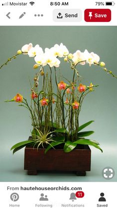 Solar Light Potted Plant Indoor Garden Led Decorative Office Fake Phalaenopsis Light Strong Resistance To Heat And Hard Wearing Led Lamps Lights & Lighting