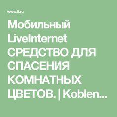 Мобильный LiveInternet СРЕДСТВО ДЛЯ СПАСЕНИЯ КОМНАТНЫХ ЦВЕТОВ. | Koblenz - Дневник Koblenz |
