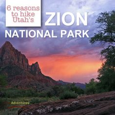 6 Reasons to #hike Utah's Zion National Park