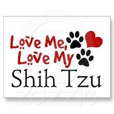 Love me, love my Shih Tzu