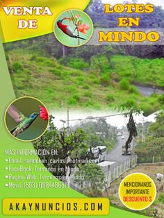 Lote de Venta en MINDO – Pichincha – Ecuador #AllyouneedisEcuador