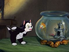 Figaro and Cleo from Pinocchio