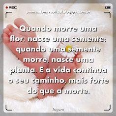 http://ummundonovooficial.blogspot.com.br/