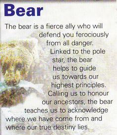 Bear spiritual guide