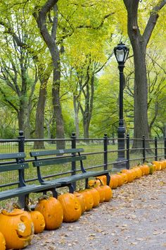 Pumpkin lanterns in fall in Central Park