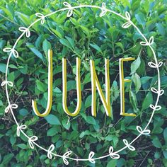 June..that lush time of year when everything is green, God is doing the watering, nothing to do but sit back and enjoy.