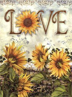 ~Sunflower•Sensation~