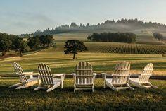 Willamette Valley Wine Country, Oregon