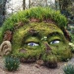 crazy garden idea!!  thought it was so different!