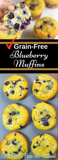 These gluten free blueberry muffins are moist and fluffy with only the healthiest ingredients and not a drop of sugar. Healthy Dessert Recipes, Clean Eating Recipes, Brunch Recipes, Paleo Recipes, Real Food Recipes, Free Recipes, Eating Paleo, Flour Recipes, Drink Recipes