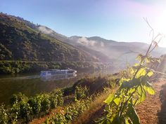 #bomdia #douro #dourolovers #landscape #beautifulworld #douroriver #river #dourovalley #ilovedouro #traveling #travel_drops by nelson_almeida.photography Douro Valley, Five Star Hotel, In The Heart, Beautiful World, Terrace, Traveling, Old Things, River, Mountains