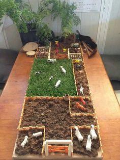 Mini farm set up