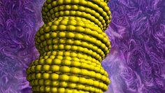 Artificial Muscles-Carbon Nanotubes