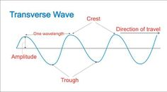 Examples of Transverse Waves