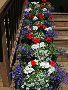 I'm in love with red, white and blue flowers for summer landscaping!