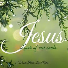 JESUS IS THE LOVER OF OUR SOULS. TRUE STATEMENT. AMEN... MILDRED WILLIAMS