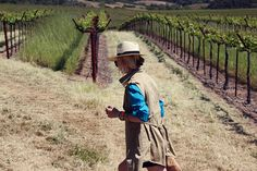 """16 – """"She evaluates a field and buys it; she plants a vineyard with her earnings."""