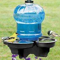 *Bird Water Cooler~~Wonderful idea~<3