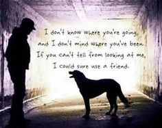 Puppy Love Quotes and Sayings - Avast Yahoo Image Search Results I Love Dogs, Puppy Love, Creepy, Dog Quotes Love, Pet Quotes, A Girl And Her Dog Quotes, Quotes About Dogs, Dog Rules, Cockapoo