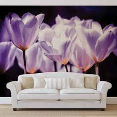 Huge Purple Poppies Photo Wallpaper Mural £44.99 This Purple Poppy Photo Wallpaper Mural is available in several different sizes Made to order, using the highest quality machines & materials 115g/m2 Paper Packaging Dimensions (cm) 118 x 10 x 10 Please allow 14 days delivery Free uk delivery only @ www.totsrus.site