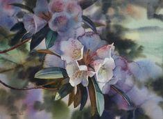 Rhododendron in Dapped Light, watercolour by Svetlana Orinko