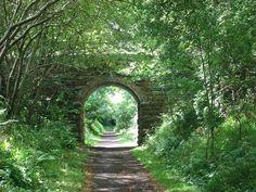 Old Railway Line, Roslin Glen, Scotland