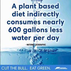 Eating Green would help the Water Shortage...