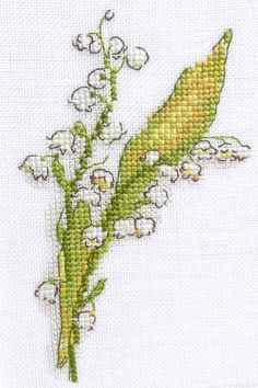 Lily of the Valley - Grammy's favorite