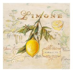 Tuscan Lemon Stretched Canvas Print by Angela Staehling at Art.com  There are 2 others with a similar theme that could make for a set of 3