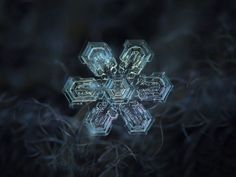 Amazing macro-photography of individual snowflakes Photographer Alexey Kljatov takes incredible close-up photos of snowflakes in his . Fotografia Macro, Snowflake Photography, Snowflake Pictures, Photo Macro, Micro Photography, Amazing Photography, Photography Ideas, Snow Flakes Diy, Point And Shoot Camera