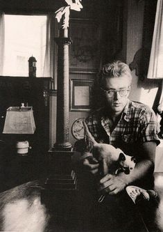 even james dean liked cats