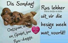Sondag Evening Greetings, Afrikaanse Quotes, Goeie Nag, Goeie More, Morning Blessings, Day Wishes, Good Morning Quotes, Happy Sunday, Quote Of The Day