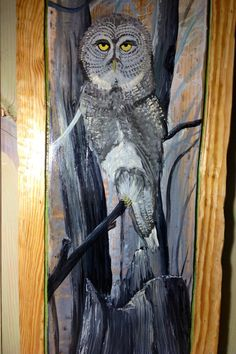 """Original Painting Gray Owl 4ftx16"""" One of a kind home centerpiece wall art on reclaimed pine wood Wildlife artist Todd Lynd nature lovers"""